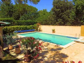 Holiday rental pool - Les-Taillades - La Michelette - Luberon Provence