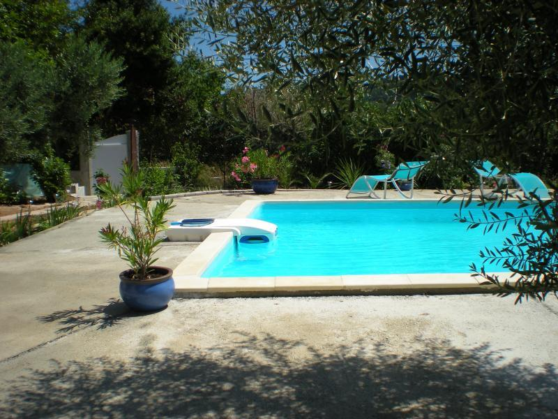 Cottage with pool in the Haut Var