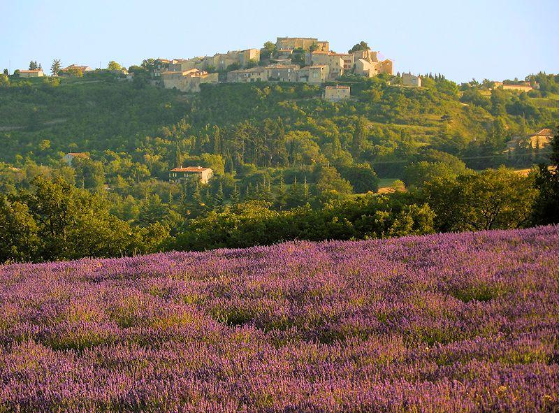 Rural cottage - Vacheres - La Ramade - Luberon Provence