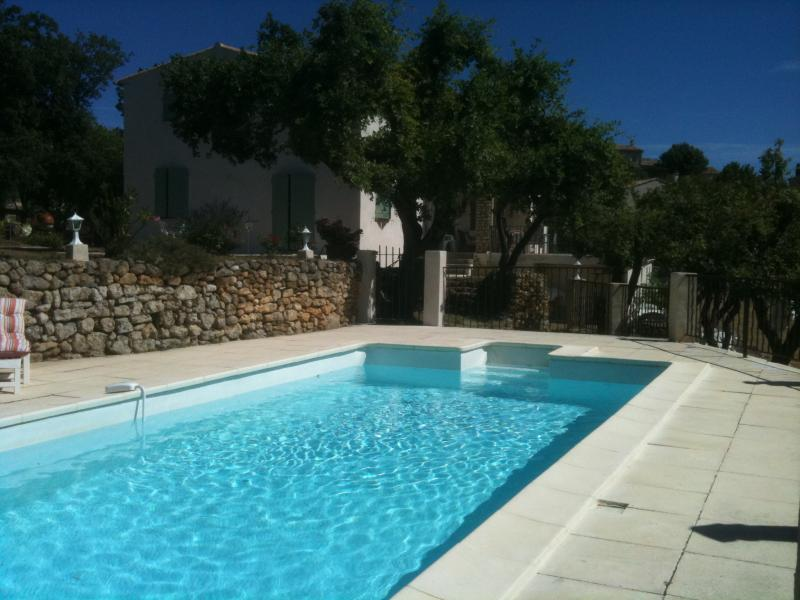 Holiday rental pool - Viens - La Burlière - Luberon Provence
