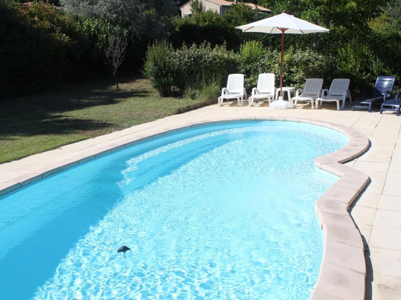 Holiday rental pool - Roussillon - La Bastide de Mathilde - Luberon Provence