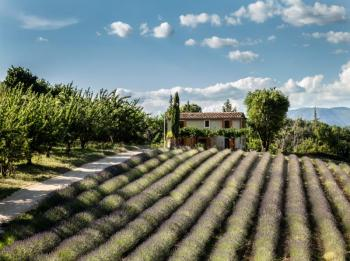 Small country house in the Luberon, in Provence