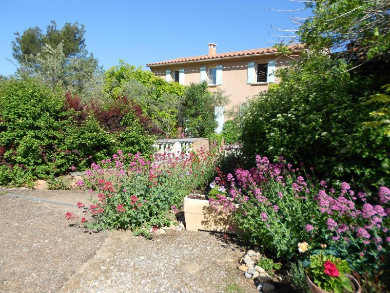 Holiday rental pool - Roussillon - L'Oulivade - Luberon Provence
